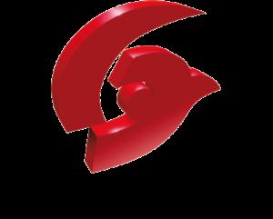 logo Visionerf