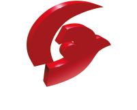 VisioNerf-Logo-BL